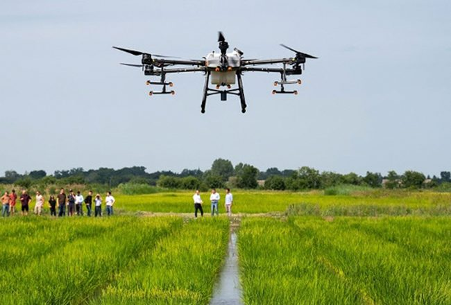 Experimental drone measurements in the MATE rice field