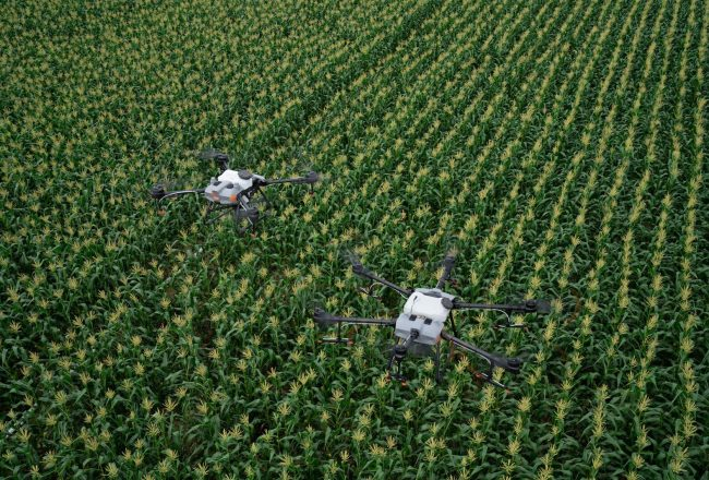 Drones and software at the service of Hungarian agriculture